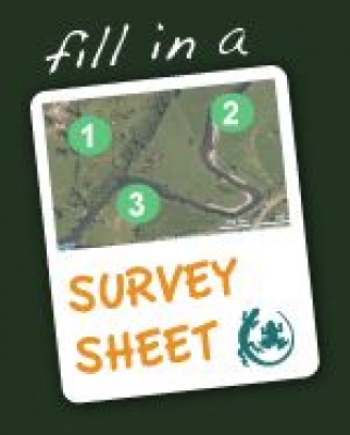 Survey_Sheet