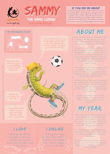 SAMMY fun fact sheet for web high