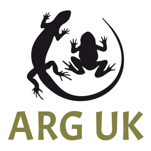 ARG UK Logo plain colour vertical